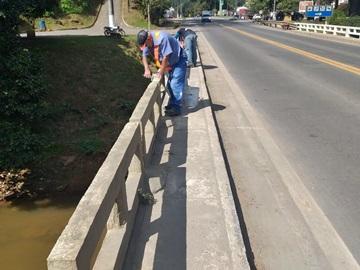 Arvoredos e corrimão de ponte na BR 262 pintados em Marechal Floriano
