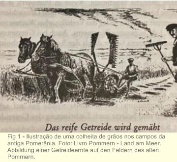 Dos campos da POMERÂNIA para a mesa de POMERODE