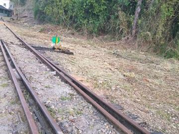 Equipe braçal da Prefeitura Municipal de Marechal Floriano promove limpeza ao longo da linha