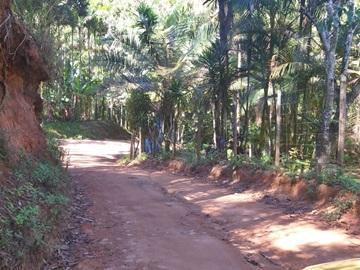 Estrada do Caracol em Marechal Floriano receberá serviço de terraplanagem e cascalho