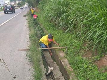 Margem de Rodovia Federal recebe limpeza em Marechal Floriano