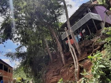 Árvores em área de risco para moradores em um bairro de Marechal Floriano