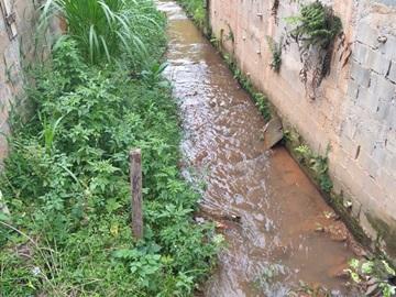 Peixes morrem no Córrego Batatal em Marechal Floriano