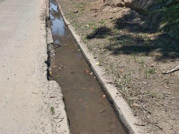 Água das chuvas represada à margem da BR 262 em Marechal Floriano 4
