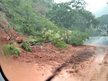 Queda de árvores e lama na rodovia Pedro Cola e BR 262 na Região Serrana