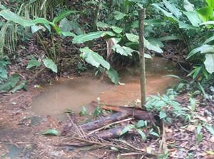 agua de chuvas 2 m