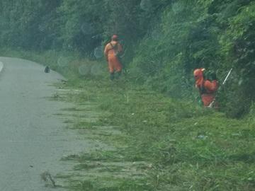 Equipes cortam capim alto às margens de BR 262 na Região Serrana