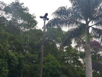 Lâmpada queimada deixa perigoso o acesso à sede de Domingos Martins