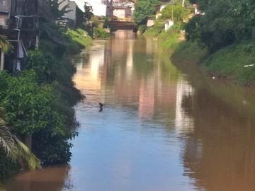 Tempestade mantém alto o nível do Braço Sul do Rio Jucu e derruba cabos sobre árvores