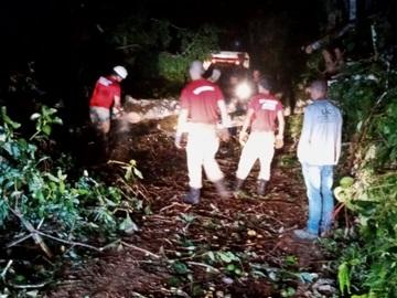 Ventania derruba árvores e interdita estrada em Marechal Floriano