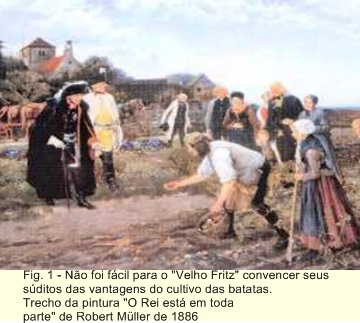 OS POMERANOS E O CULTIVO DE BATATAS