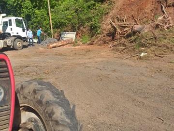 Árvores que caíram e ameaçam queda na BR 262 são retiradas pela Prefeitura de Marechal Floriano
