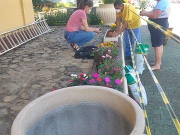 Novas flores replantadas em vasos após destruição pelos moradores de rua