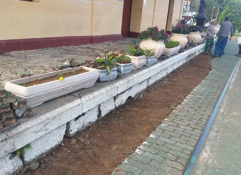 plantacao-de-flores-em-mf