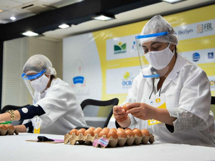 Concurso-de-ovos
