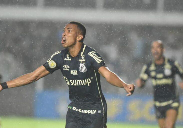 © Ivan Storti/Santos FC/Direitos Reservados